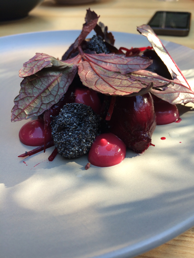 beetroot and poppyseed date - the apo